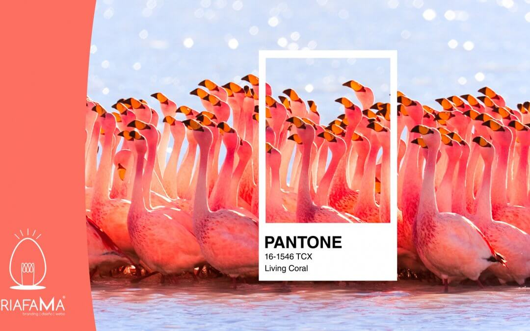 Living Coral – Color Pantone del año 2019