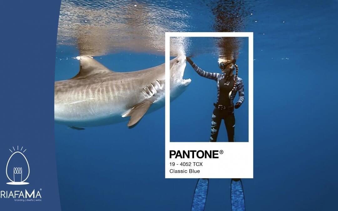 PANTONE 2020 CLASSIC BLUE – El color de moda para el año 2020